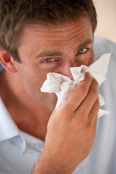 Eliminate allergy triggers